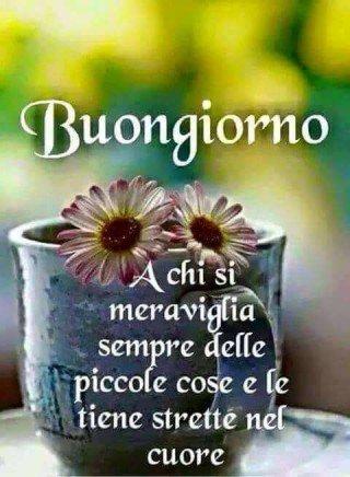 Tiziana Ciucchi On Twitter Buongiorno A Tutti I Miei Cari Amici