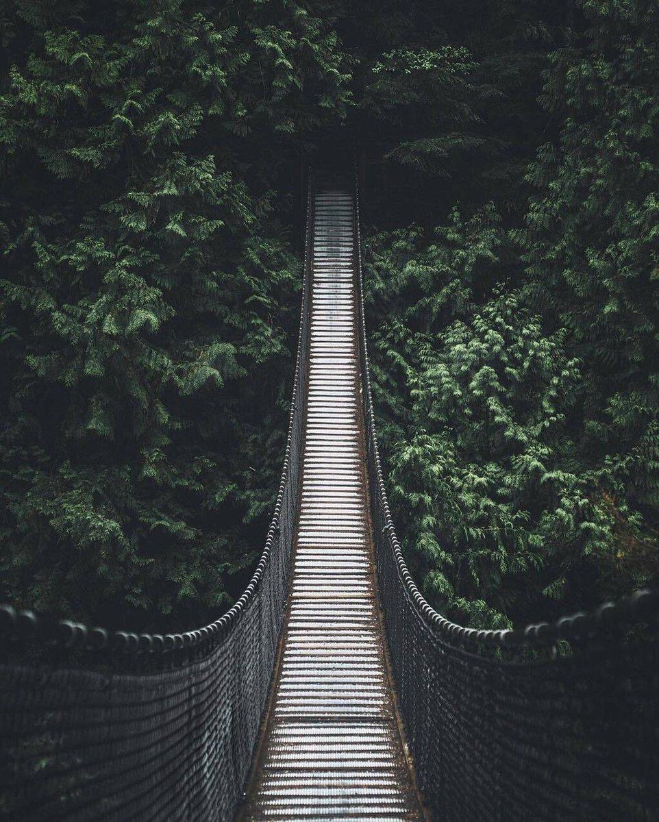 Risultati immagini per جسر النسيان في كندا