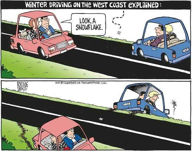 Image result for weather driving funny