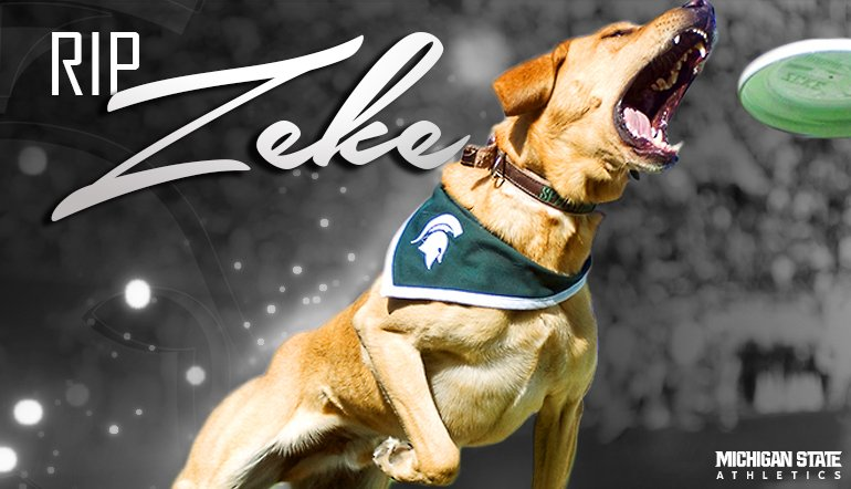 RIP Zeke the Wonder Dog III. We will miss you! #RIPZeke https://t.co/jAkJS2nAVz