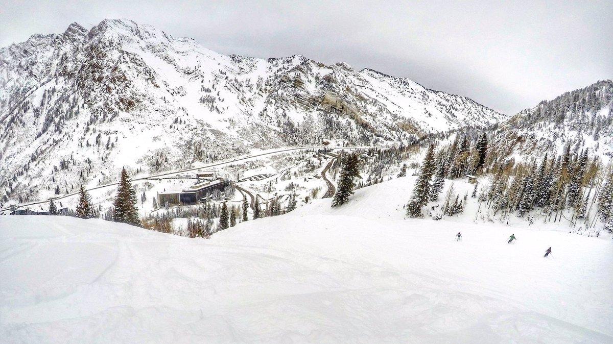 snowbird ski report