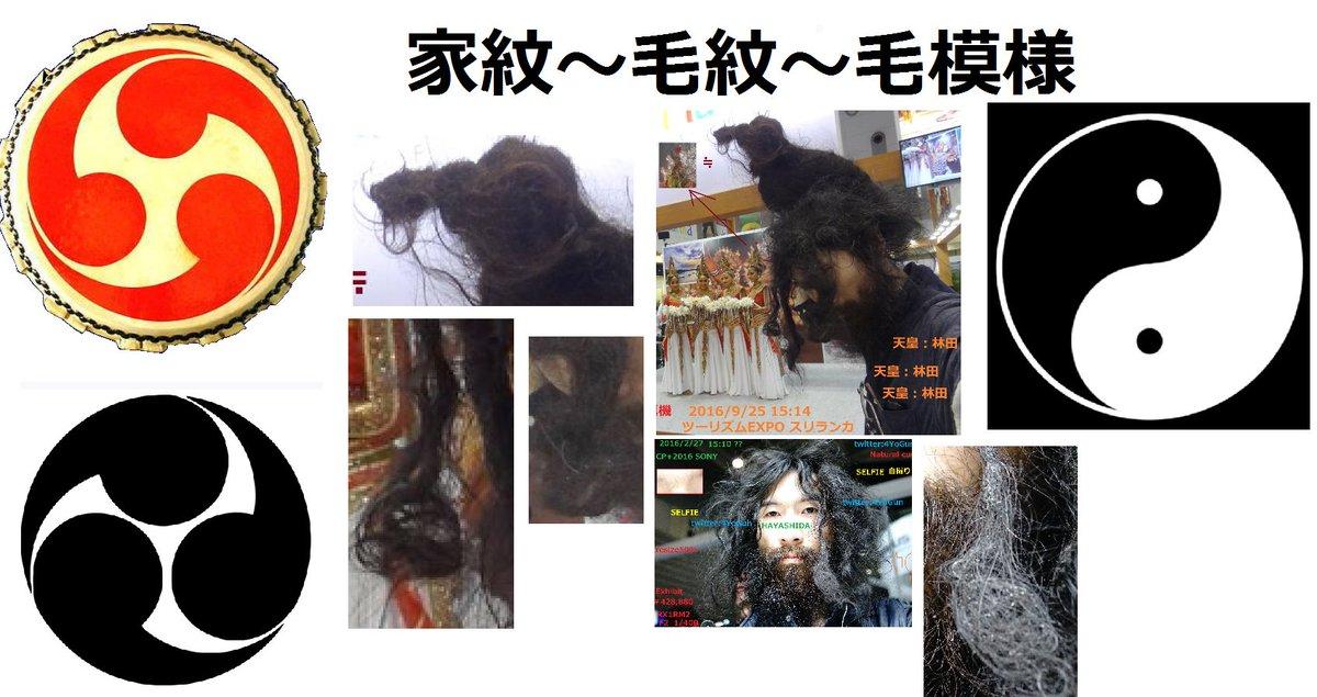 厚木市スレッド あゆコロちゃん16©2ch.netYouTube動画>5本 ->画像>23枚
