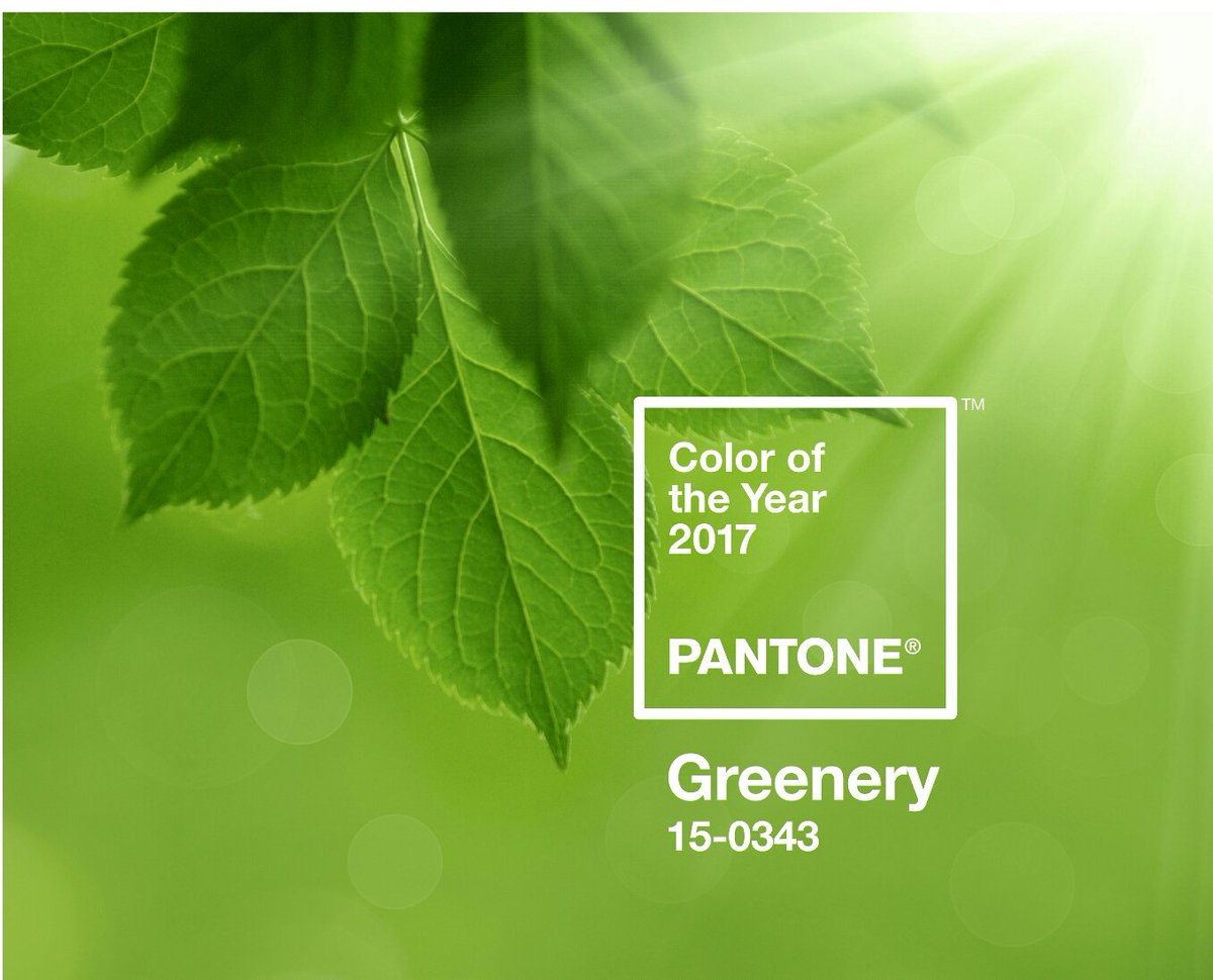 verde color de la esperanza para este hace unos dias pantone revel el greenery el colordelao moda