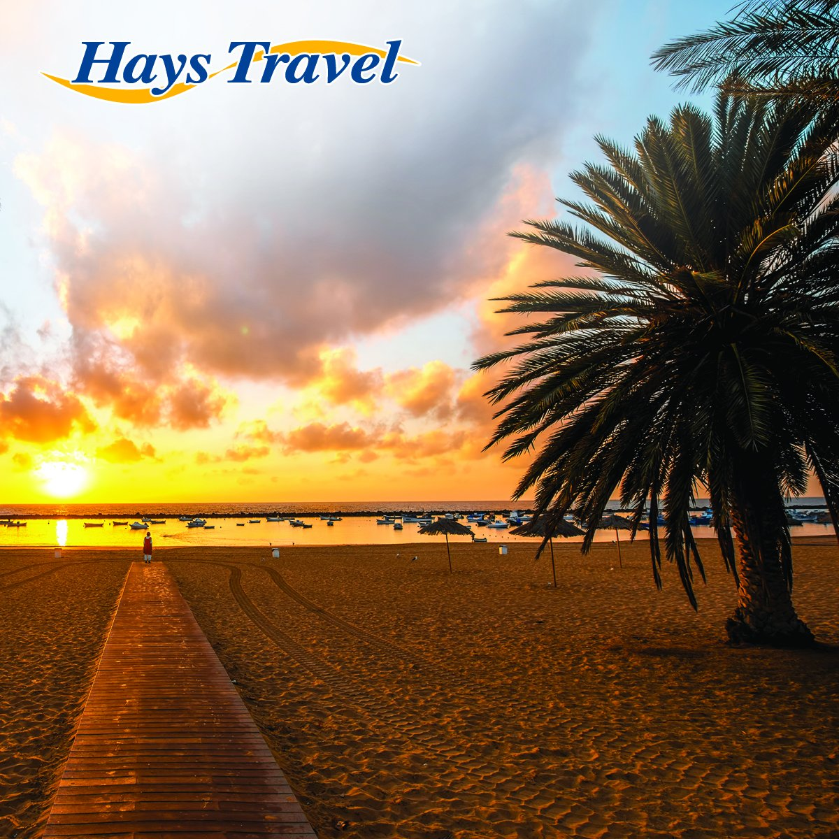 hays travel - photo #14