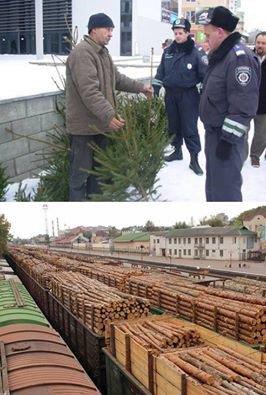 Украинец пытался вывезти в Италию в носках 182 тыс. евро, - ГФС - Цензор.НЕТ 3725