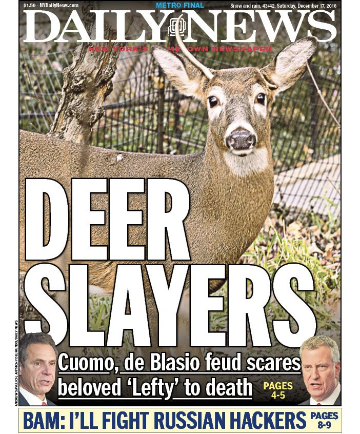 Image result for Deer Slayers NY daily News Front page