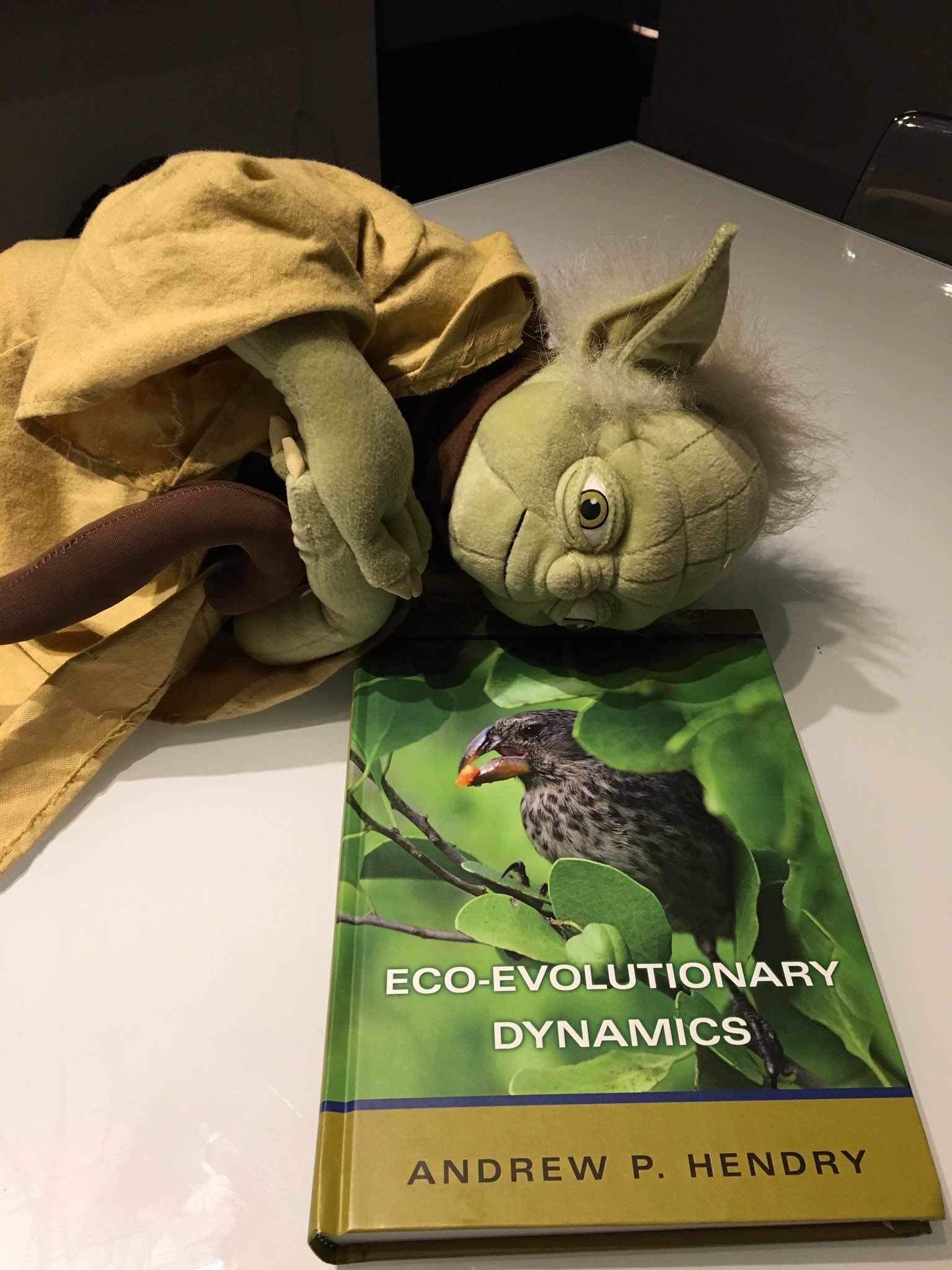 @EcoEvoEvoEco The force is strong with this one #PeopleWhoFellAsleepReadingMyBook Eco-evolutionary Dynamics @Princeton https://t.co/m11K6D2dCC