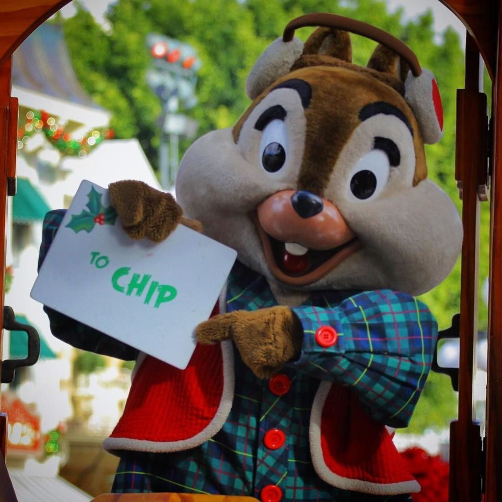 Don't you just love getting #Christmas cards? @disneylandtoday #chip #acf #disneylandholid… https://t.co/kv4jriQ7ZL https://t.co/91Jv9YXCPH