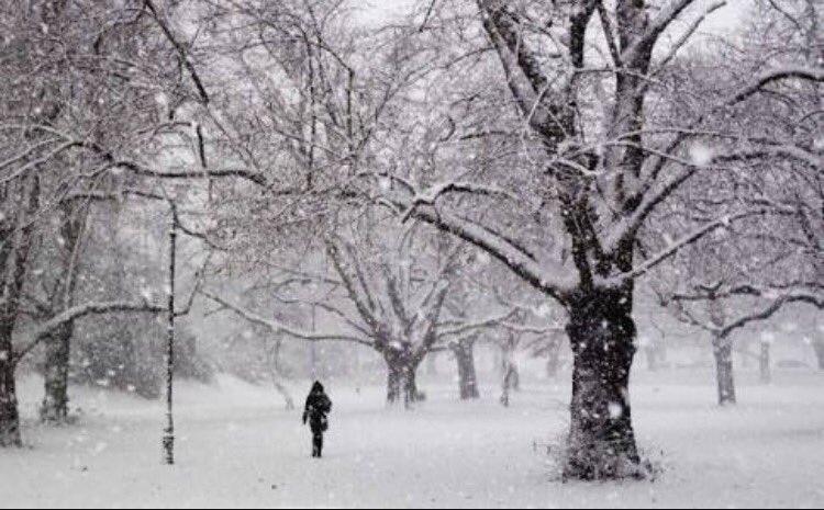 Previsioni Meteo: arriva l'Inverno con Freddo e Neve