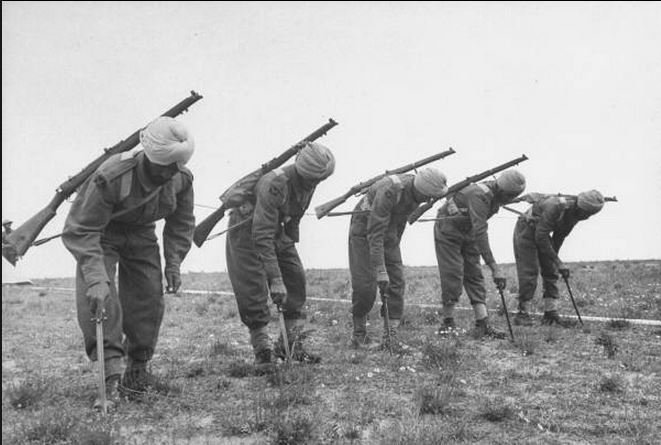Indian sappers working to clear a German minefield in 1943 Look carefully - they're actually using their bayonets to prod for mines!