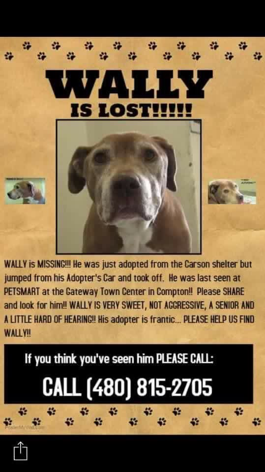 @Venice311 Please help! The dog got out in #Compton https://t.co/Qk21ONjf3f