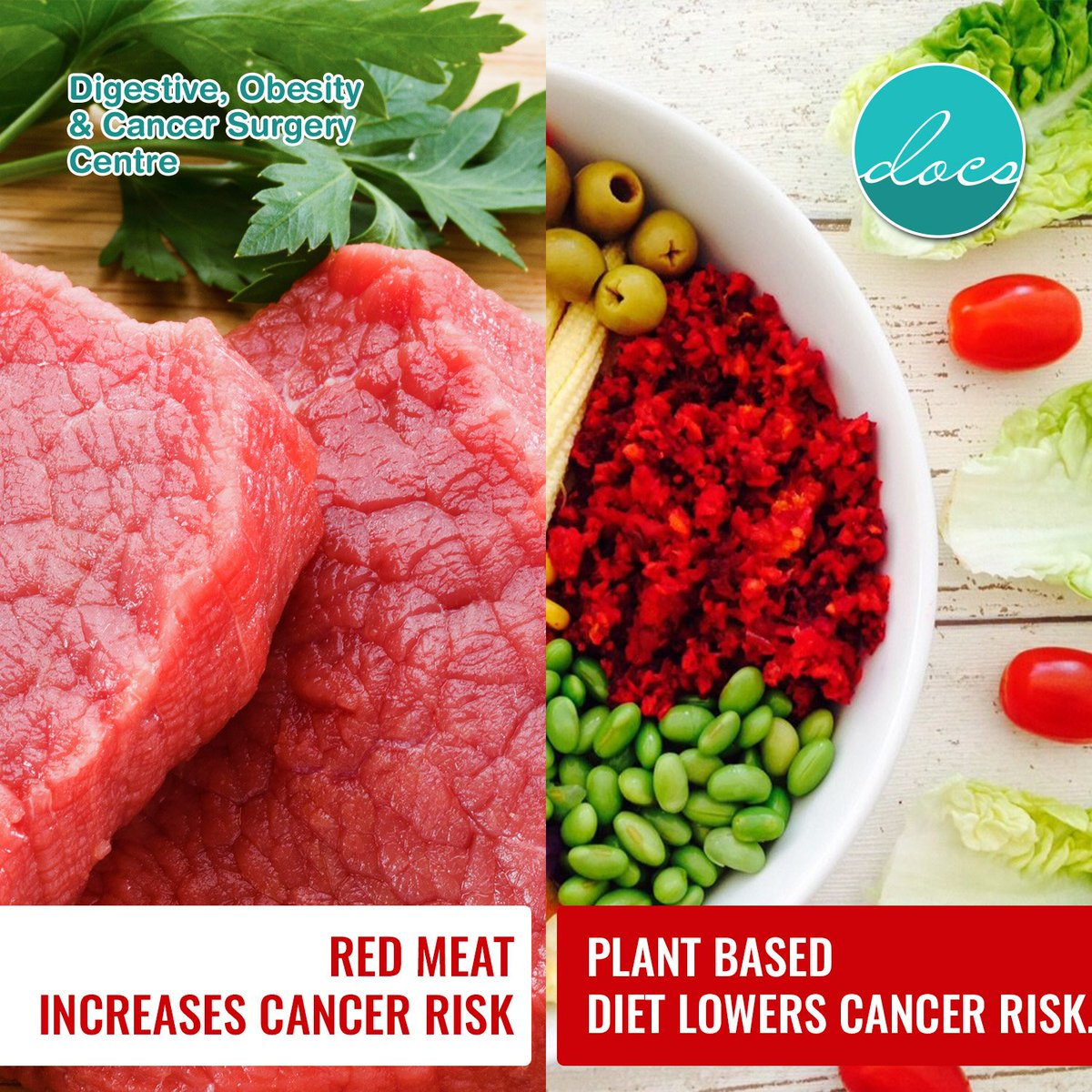 Dr Rajesh Bhojwani On Twitter Docs Drrajeshbhojwani A Study Shows That Eating Meat Increases The Risk Of Colon Cancer Whereas Plant Based Diet Lowers The Risk Https T Co Axjaznvf9y