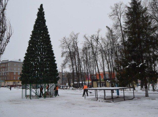 Завершается установка новогодней ёлки