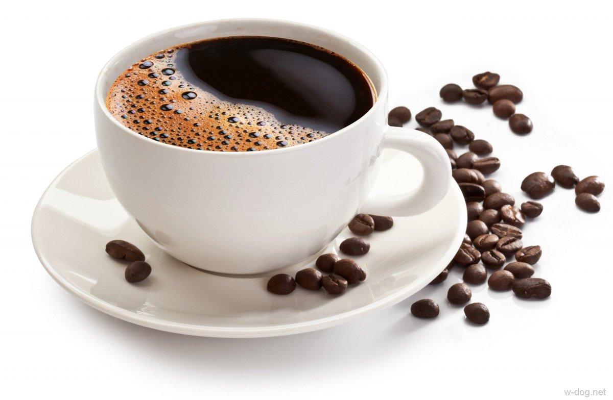Мировой рынок кофе рефераты