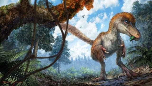 U of A researchers study dino tail preserved in amber that outdoes Jurassic Park.