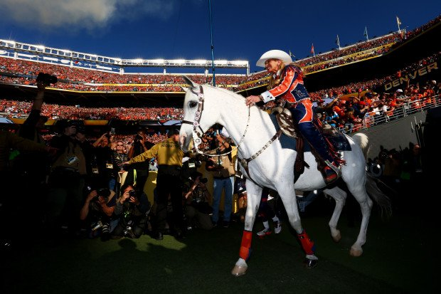 Broncos mascot Thunder named National Western Stock Show parade Grand Marshal by @dpmcghee