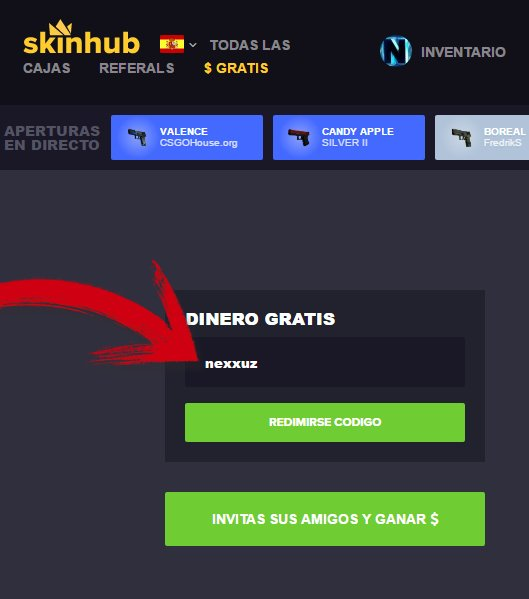 how to use codes on skinhub