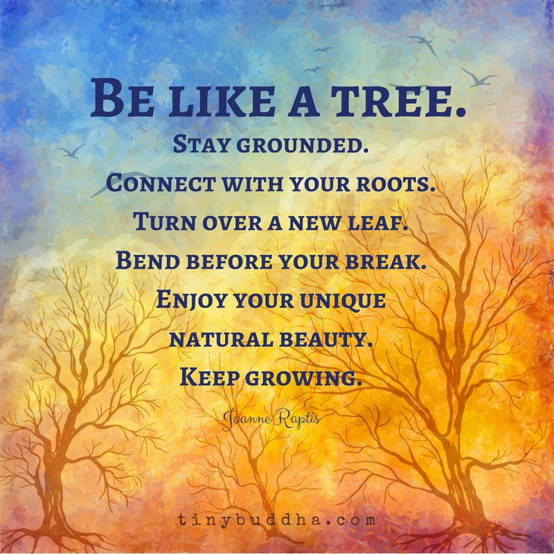Be Like A Tree Stay Grounded Connect With Your Roots Turn Over New Leaf Bend Before You Break Keep Growing