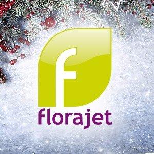 RT Florajet : Quelques informations pour #jardiner au mois de Décembre 🌺 … https://t.co/AcLqX1tYFC