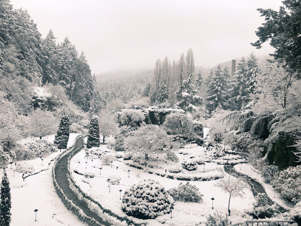 The paths are clear. Come out and visit this stunning scenery. #butchartchristmas #butchartgardens #yyjnow #YYJsnow https://t.co/B0v6Gk8kLd
