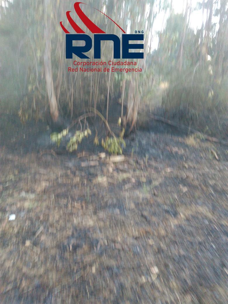 Incendió pastizal el convento 500m2 pastizal matorral euca controlado por bomberos @chilewildfires @reddeemergencia