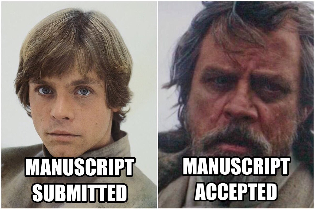 Image result for manuscript accepted