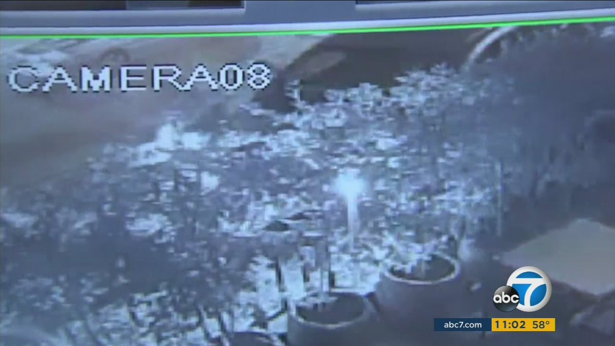 Surveillance video shows victim trying to flee from mini-van in fatal downtown Burbank crash