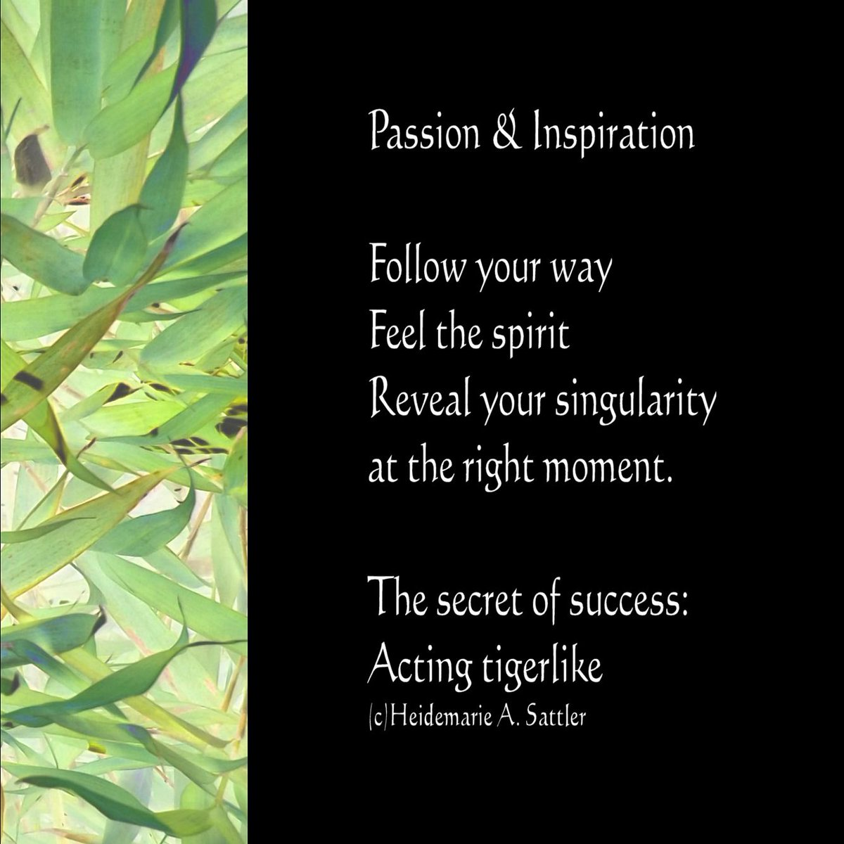 Heidemarie Sattler On Twitter Motivation Poem Tigerlike