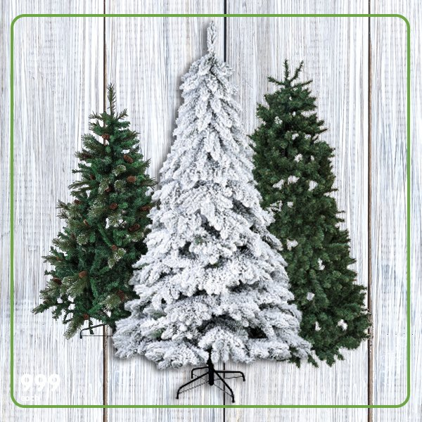 Now is probably the best time to put up your Christmas tree. Head to your  nearest Makro store or shop here: https://goo.gl/AQFG1a  pic.twitter.com/o2bsV8n2He - Makro South Africa On Twitter: