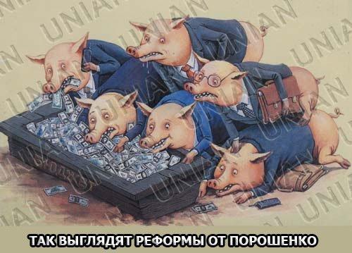 В Украине нужно создать институт энергетического омбудсмена для защиты потребителей, - нардеп Рябчин - Цензор.НЕТ 1159