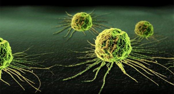 Massive #chemotherapy breakthrough astonishes #scientists https://t.co/0ZgfJAVi5v #cancerbreakthrough #CancerAwareness #cancer #oncology https://t.co/E9pLPPnPyK