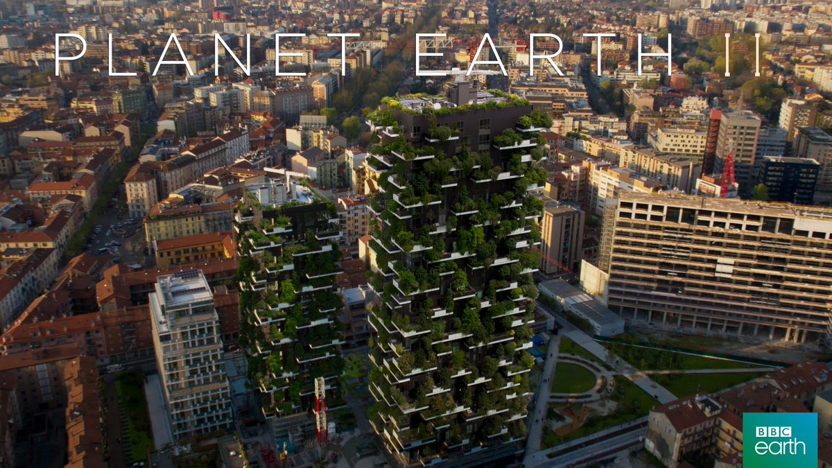 Greening the walls and roofs of our buildings could create a rich and...