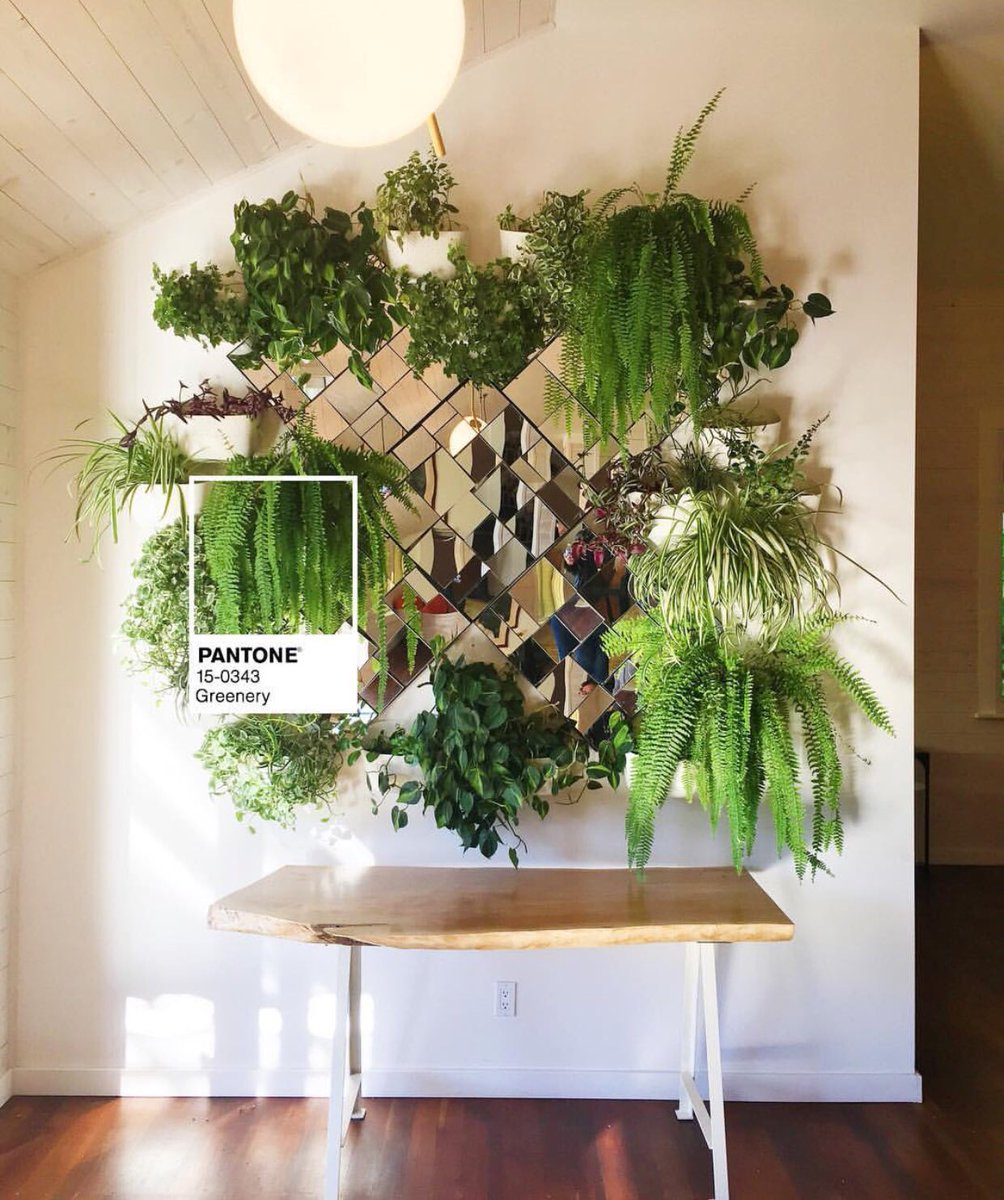 Laurelandwolf Brought The Interior Design Industry Into Online Era Theyre Also Good At Bringing Greenery To Life Therubystreet Pictwitter