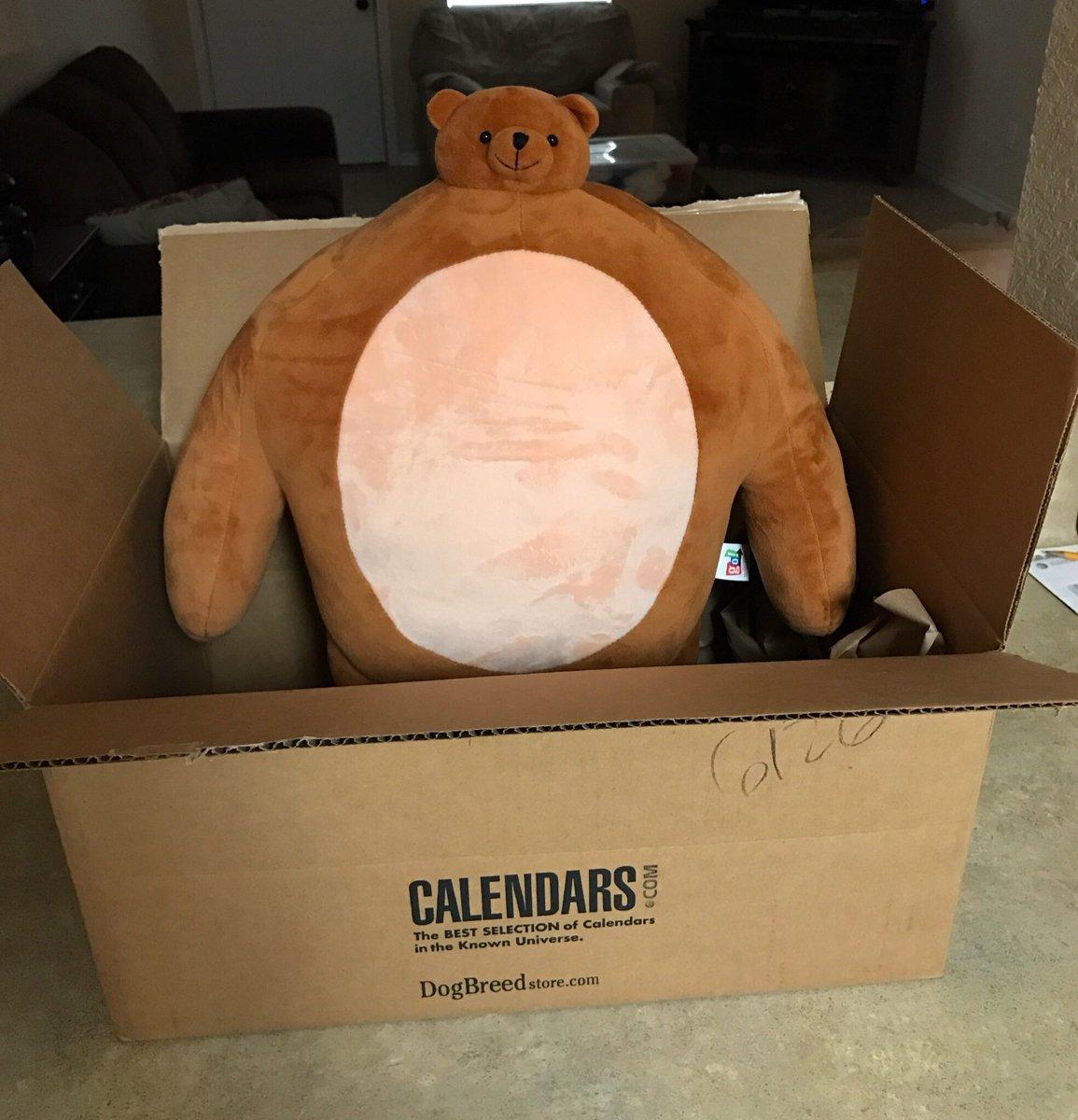 Czf2FLJVEAAoVfe tiny head bear