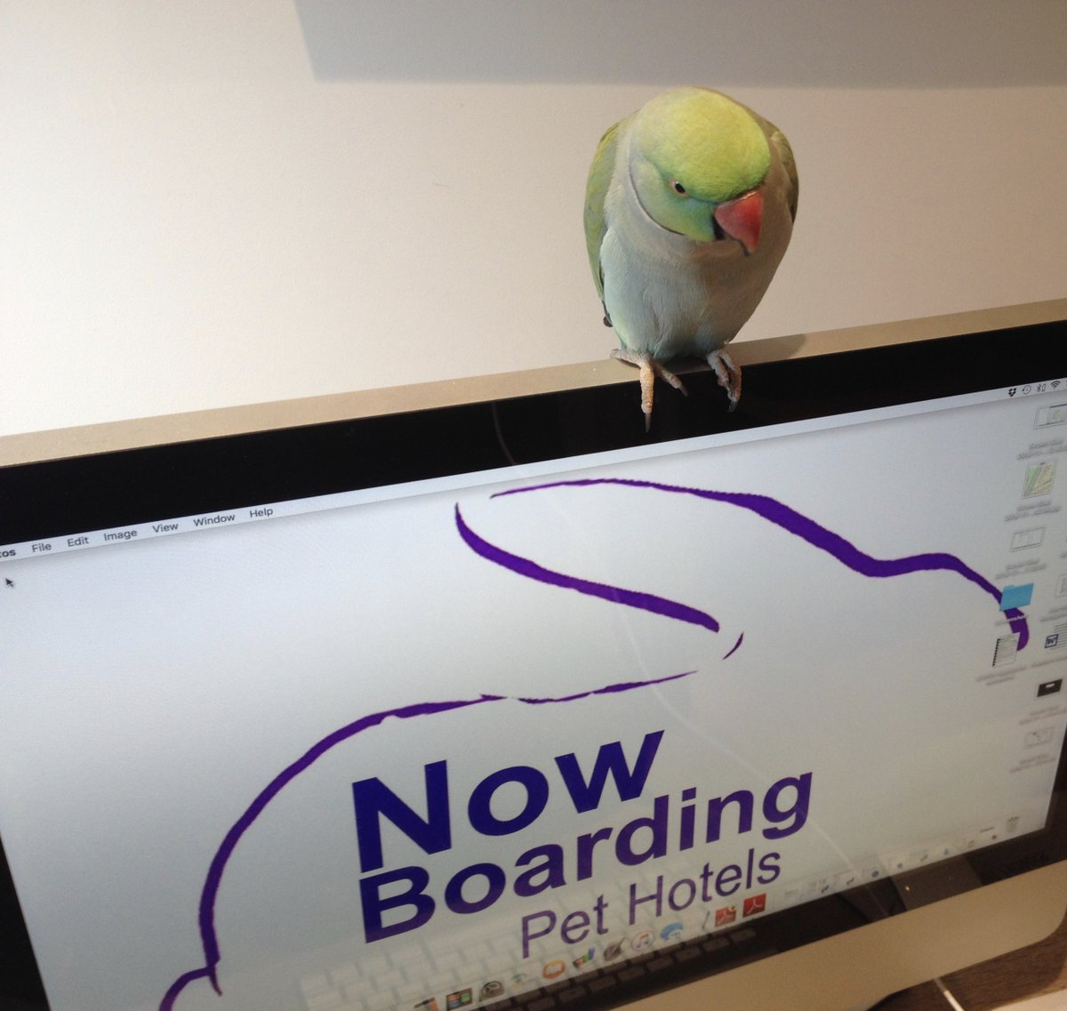 now boarding bexley nowboardingbex twitter
