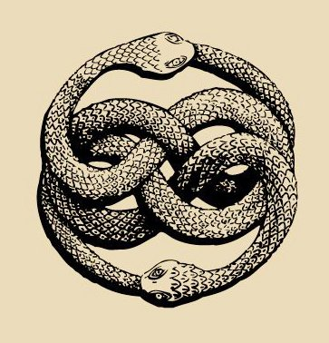 Vsauce2 On Twitter Ouroboros Serpent Or Dragon Eating Its Own