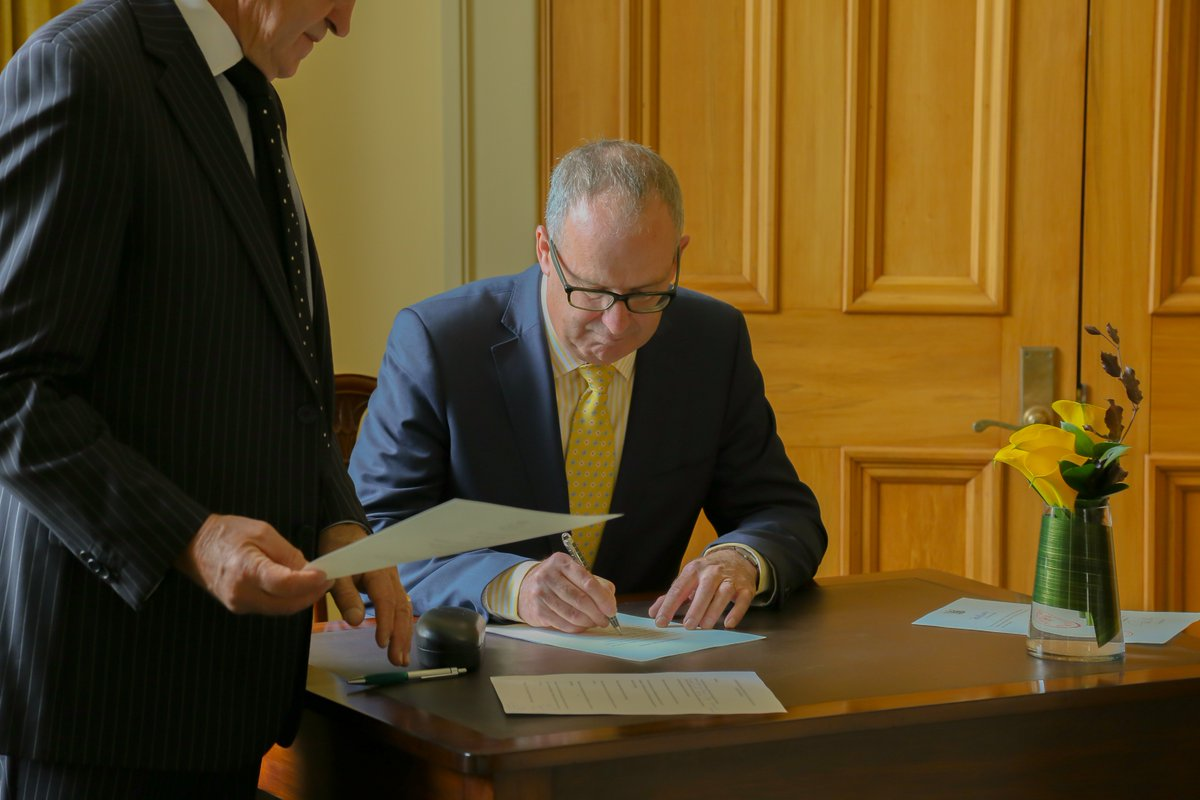 how to become an auditor nz