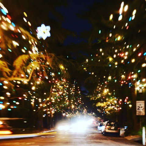 kendra tierney on twitter christmas tree lane in altadena is so pretty and its just down the road from us we didn httpstcopqxztjkur8