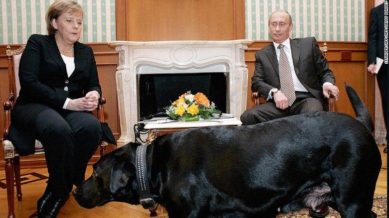 【速報】ロシアのプーチン大統領が来日©2ch.net YouTube動画>9本 ->画像>57枚
