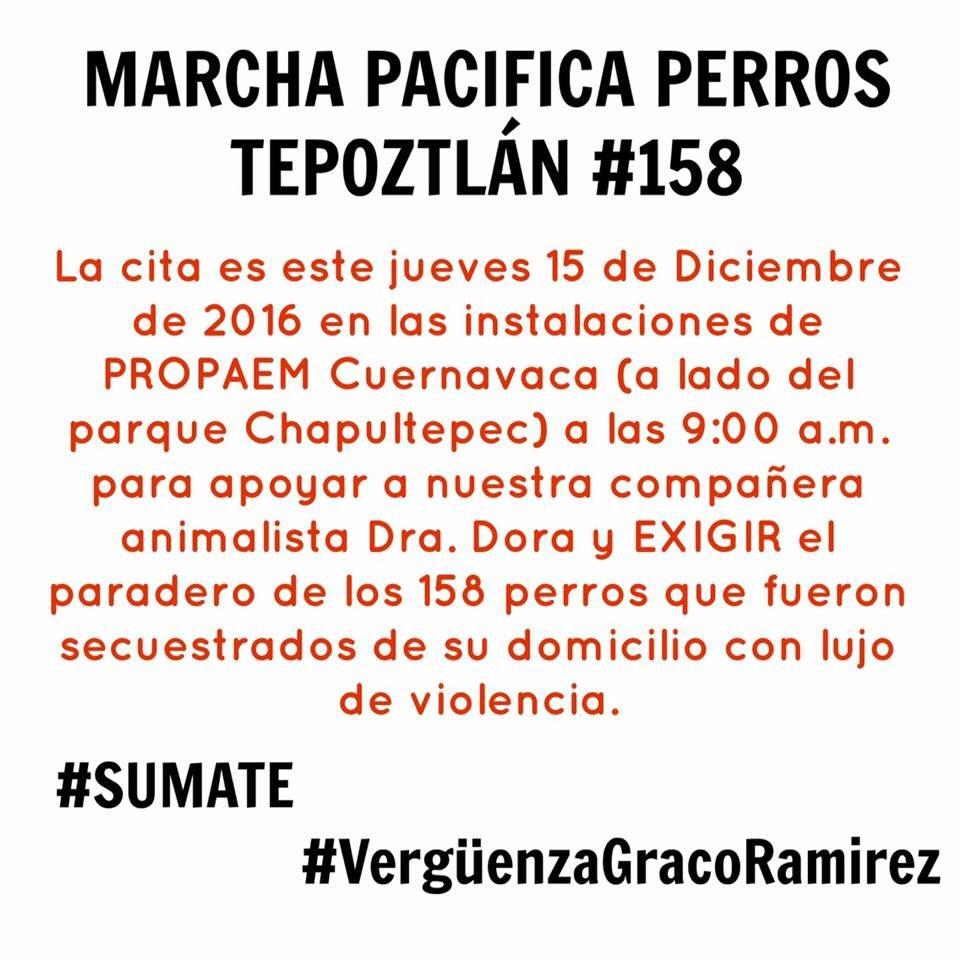 Marcha pacífica en perros Tepoztlán #158 en PROPAEM Cuernavaca mañana 9:00 a.m. #GracoDevuelveALosPerros https://t.co/ydyBt2pM29