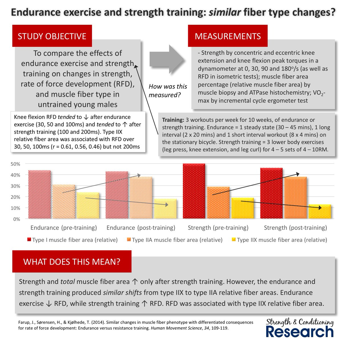 the adaptations of the human body after endurance training Similar initial adaptations in human after 16 weeks of endurance exercise training body sprint-interval training on strength.