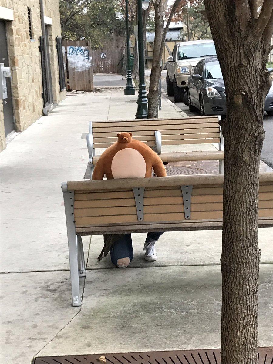 CzuLKLNUsAE8FKZ tiny head bear