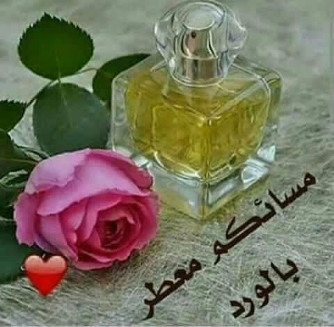 حبيب قلبي انت I9i39go8vbeiavd Twitter