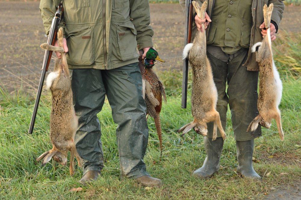 El informe durísimo de @ecologistas contra la caza. https://t.co/5XXvzw2XLs #LaVerdadDeLaCaza https://t.co/sNdOMD4J4z