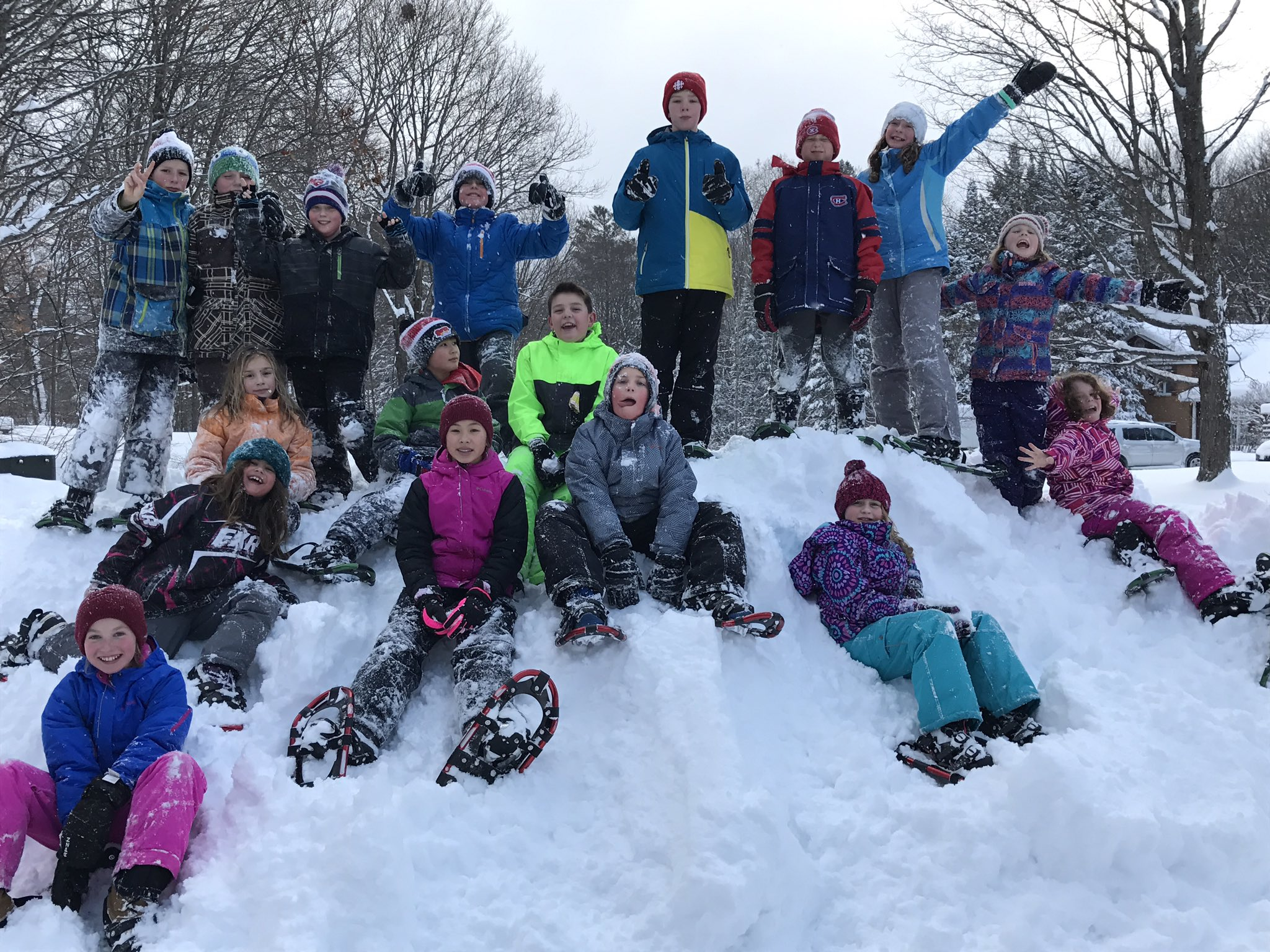 #snowday photo of @MacaulayPS Ss enjoying the great outdoors all year. #tldsbbrave #resilient Ss #feedallfour https://t.co/BtCIf4LLKN