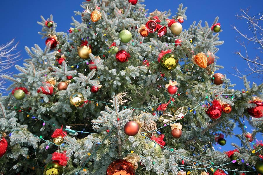 Big Bear Christmas.Big Bear On Twitter Santa S Christmas Present To Big Bear