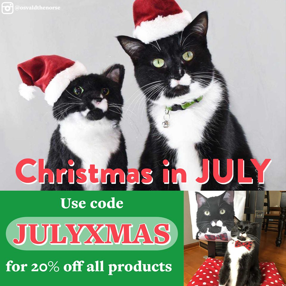 Christmas In July Cat Meme.Thesparkgroup All Of The Animals On Twitter