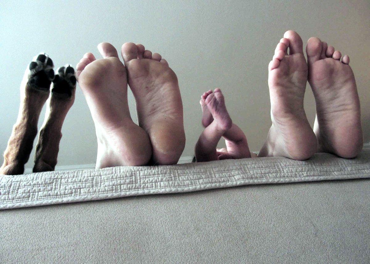 Картинка семья прикольные, хорошего