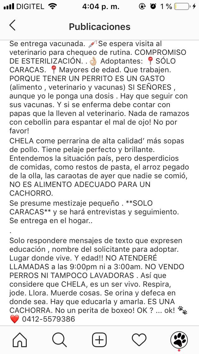 RT @unapataamigaccs: CHELA EN ADOPCIÓN. https://t.co/fReDeYRY4h