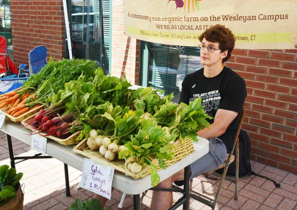 test Twitter Media - North End Action Team Farmers Market celebrates 10 years of offering fresh fruits & vegetables to residents of Middletown's North End. Wesleyan's own Long Lane Farm is proud to take part in this effort! 🥕🍅 Learn more via @Middletownpress: https://t.co/rzGpvnv1jV https://t.co/oKIyhdteab